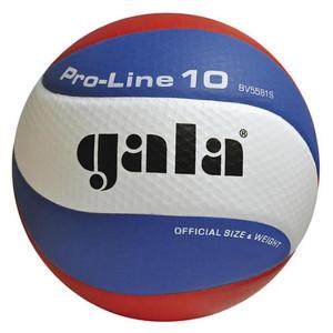 Míč volejbal PRO LINE  5581S
