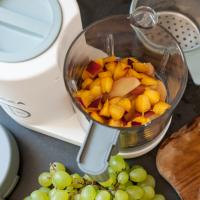 Parní vařič + mixér BABYCOOK Neo Eucalyptus